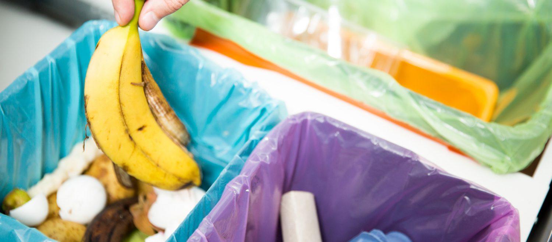 Recykling - jak zacząć i segregować