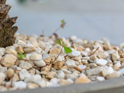 Jak wykorzystać gruz w ogrodzie - 4 pomysły