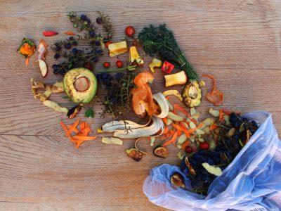 Odpady bio - segregacja
